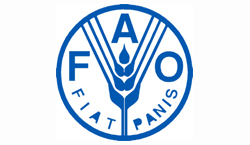 FAO-Fishinfonetwork Globefish